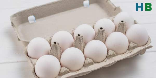 Best Protein eggs